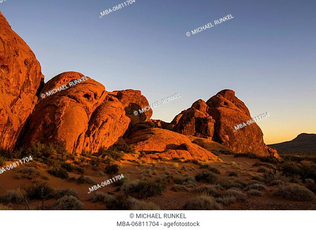 Redrock Sandstone formations at sunrise in the Valley of fire state park, Nevada, USA