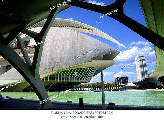 Palace of Arts Reina Sofia, City of Arts and Sciences in Valencia, Spain