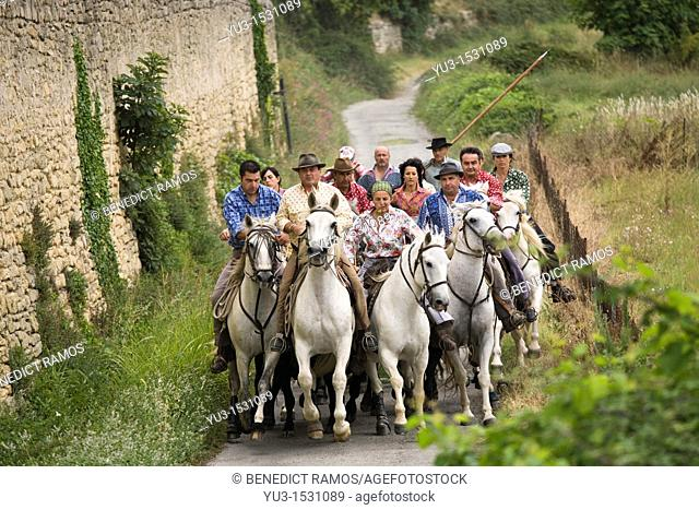 Gardians on Camargue ponies leading a bull run during the annual fête votive in the village of Aubais, near Nîmes, Gard, France