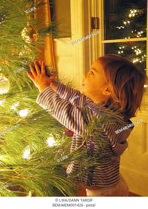 Caucasian girl examining Christmas tree