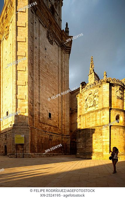 Partial view of the Cathedral at sunset. El Burgo de Osma, Soria, Spain