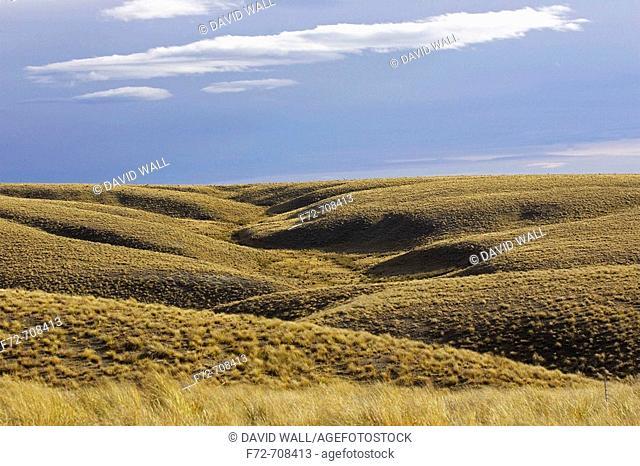 Lammermoor Range, Old Dunstan Trail, Central Otago, South Island, New Zealand