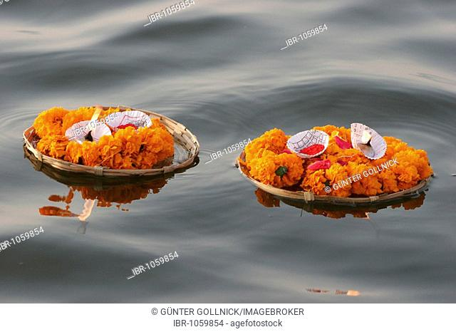 Two plates of flowers with candles floating on the river Ganges, Varansi, Benares, Uttar Pradesh, India, South Asia