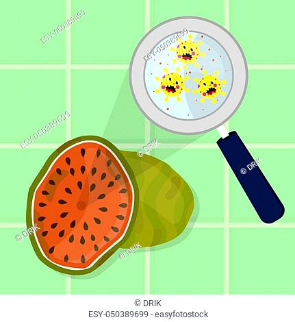 Watermelon contaminated with cartoon microbes being cleaned and washed in a kitchen. Microorganisms, virus and bacteria in the fruit enlarged by a magnifying...