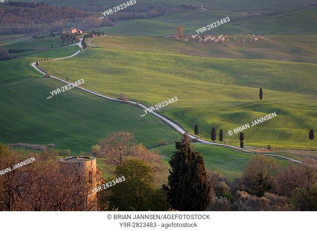 Tuscan countryside near Pienza, Tuscany, Italy