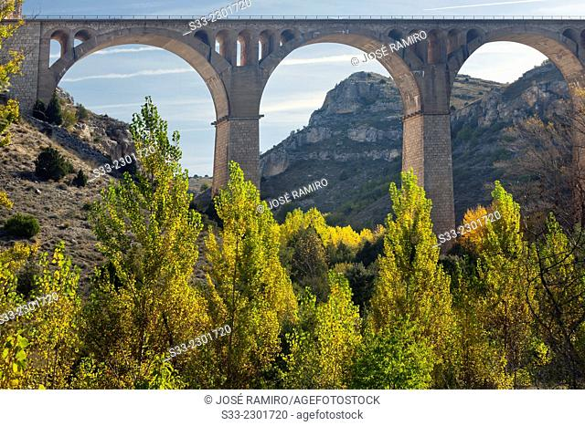 Viaduct in the Riaza Canyon Natural Park. Montejo de la Vega de la SerrezuelaSegovia. Castilla Leon. Spain. Europe