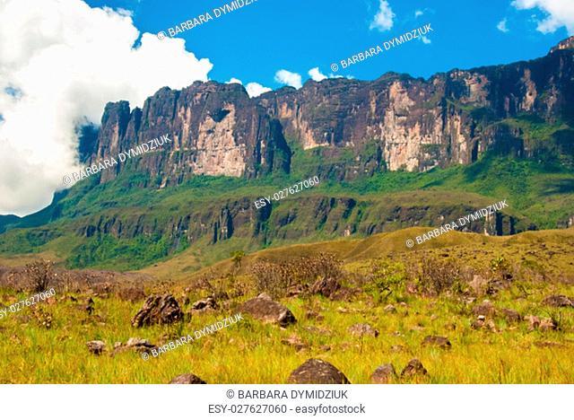 Wall of Roraima table mountain, Great Savanna, Canaima National Park, Venezuela
