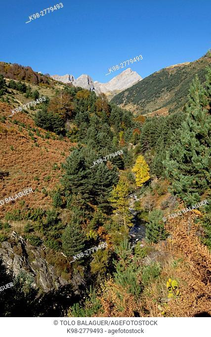 Solana de Buxo, Valley of Hecho, western valleys, Pyrenean mountain range, province of Huesca, Aragon, Spain