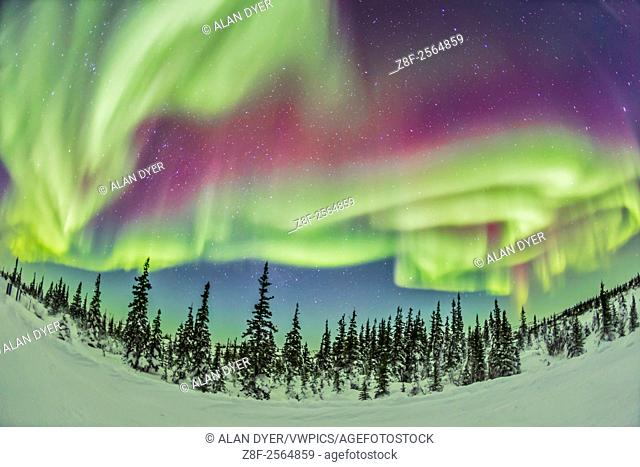 The aurora borealis, the Northern Lights, on Feb 21, 2015, from tne Churchill Northern Studies Centre, Churchill, Manitoba
