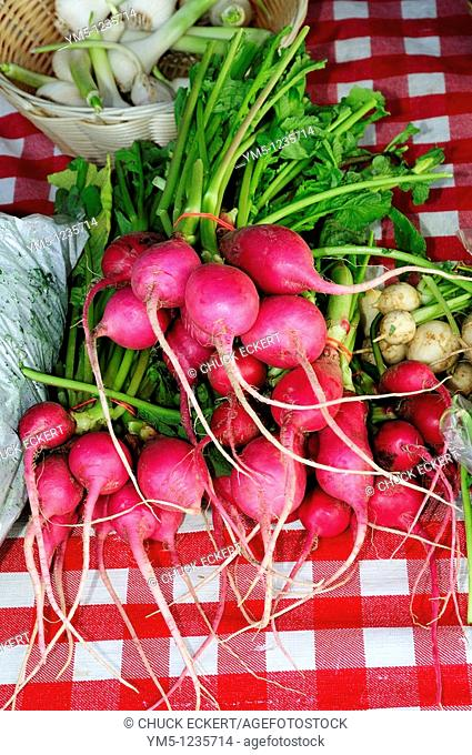 Radishes on farmers market table