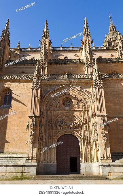 cathedral door on the northern side called puerta de ramos or de las palmas door of the branches of of the palms, salamanca, salamanca province, spain