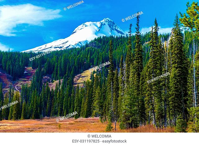 Snowy Peak of Mount Hood in the Cascade Volcanic Arc of Northern Oregon, United States. Oregon Landscape