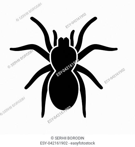 Spider or tarantula it is black icon . Flat style