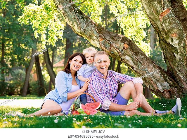 Family sitting on a mat in the park having a healthy picnic with fruits