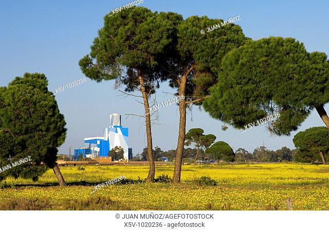 Powerhouse of the Punta del Sebo. View from the Paraje del Odiel. Huelva. Andalusia. Spain