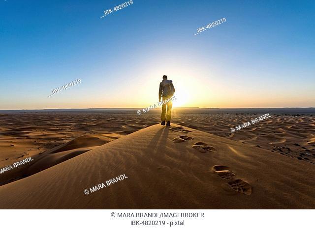 Young man standing on sand dune, sunrise, Erg Chebbi, Merzouga, Sahara, Morocco