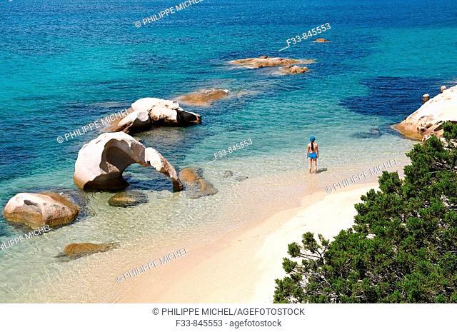 Roccia dell'Elefante ('elephant rock') beach, Costa Smeralda, Sardinia, Italy