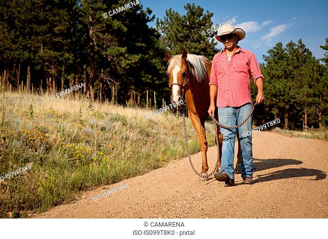 Man and horse walking on dirt road