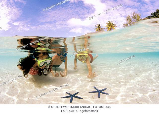 Children at the beach. Honeymoon Island. Florida. USA