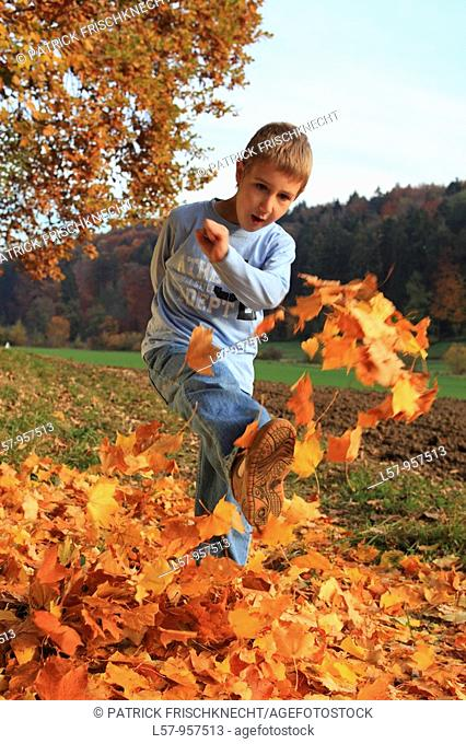 boy playing in pile of leaves, fall Zuerich, Switzerland