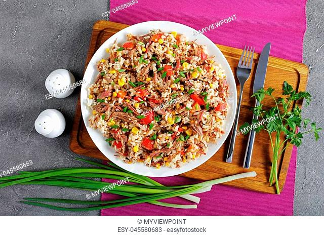 delicious shredded juicy Beef mixed with rice, vegetables, corn kernels, sweet pepper pieces, spices and sprinkled with green onion on plate on wooden chopping...