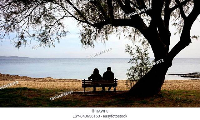 Couple sitting on a bench, looking at the sea, under a big tree