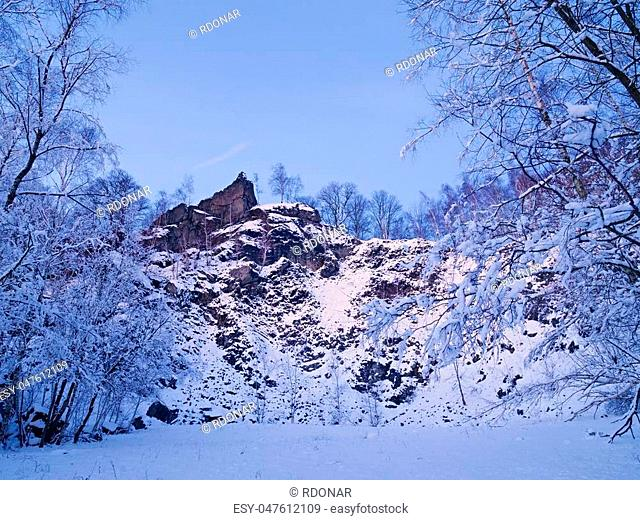 Branch treetop snow Stock Photos and Images   age fotostock