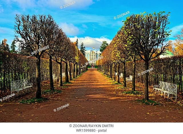 The alley with benches in Catherine park in Pushkin, Russia
