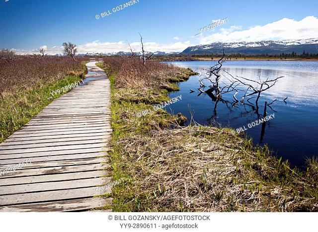 Trail to Western Brook Pond, Gros Morne National Park, Newfoundland, Canada