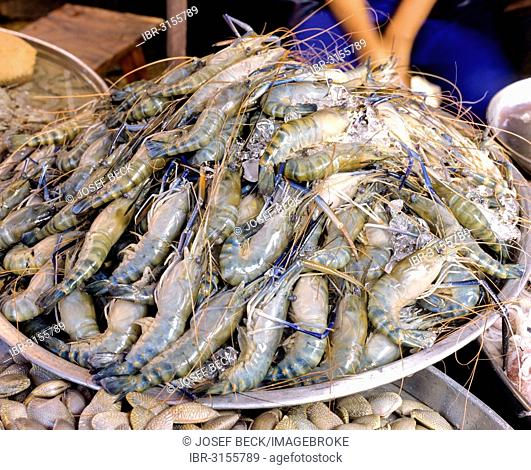 Fresh blue shrimps at the fish market, Thai food