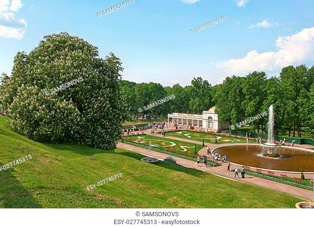 St. Petersburg, Russia - June 3: Grand Cascade of Peterhof is one of the largest gushing constructions of the world. It is located at the foot of the central...