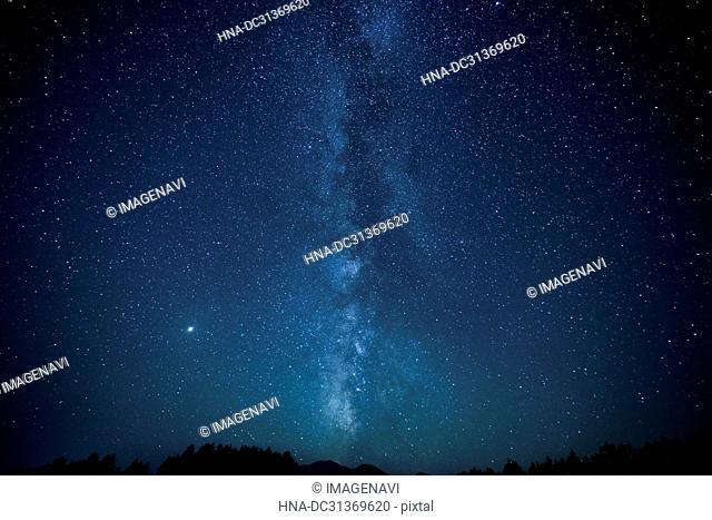 Milky Way and windbreaks