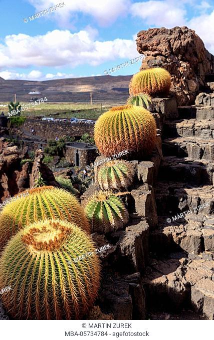 visitation of the Jardin de Cactus de Lanzarote