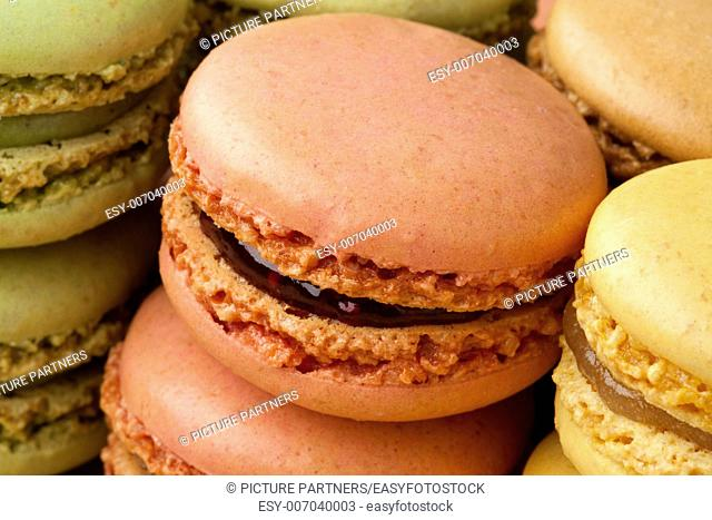 Fresh baked french macarons in rows