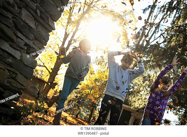 Three children in the autumn sunshine. Playing outdoors throwing the fallen leaves in the air
