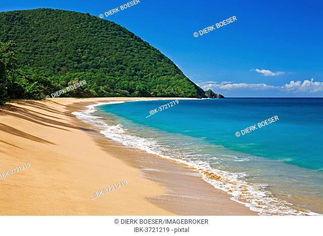 Beach of Plage de Grande Anse, Deshaies, Arrondissement of Basse-Terre, Guadeloupe, France