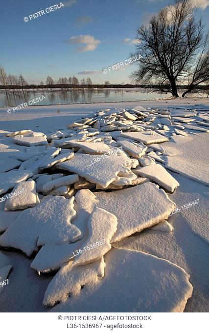 Poland. Podlasie region. Floe on Bug river