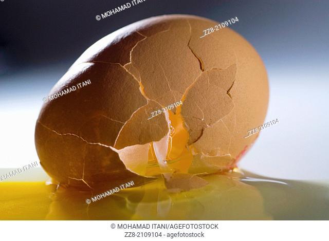 Broken egg with spilled yolk