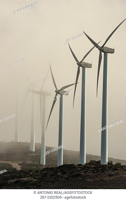 Wind farm, Higueruela, Albacete province, Castilla-La Mancha, Spain