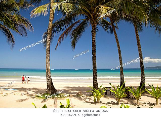 coconut trees line the long sandy beach of Sabang, Palawan, Philippines, Asia