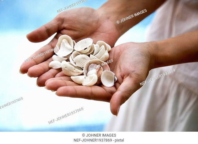 Shells on human hands