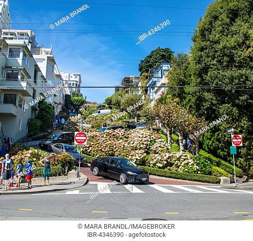 Cars meander in Lombard Street, San Francisco, California, USA