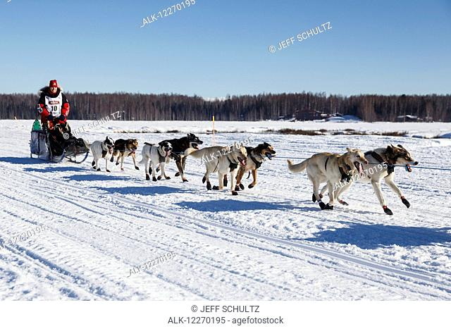 Aliy Zirkle runs on Long Lake during the Iditarod 2014 restart in Willow, Alaska