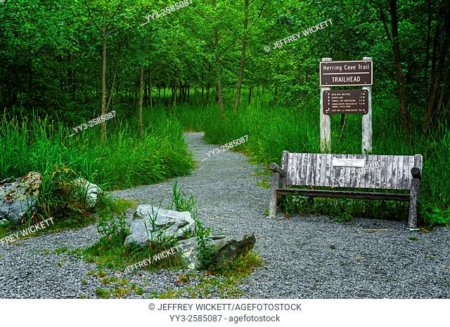 Herring Cove Trail on the Tongass National Forest leading up to Beaver Lake near Sitka, Alaska, USA