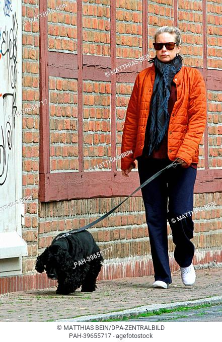 A dog nanny walks the streets with dog 'Einstein' inIlsenburg,Germany, 19May 2013. The dog belongs to US actor and director George Clooney who took the dog...