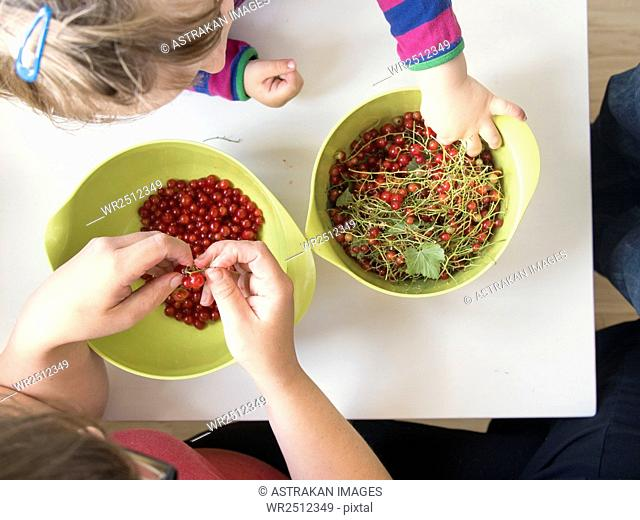 High angle view of mother and daughter separating stem from redcurrant at table