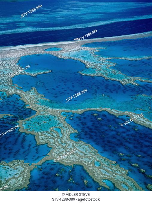 Atolls, Australia, Barrier, Blue, Coral, Coral sea, Great barrier reef, Holiday, Landmark, Natural, Ocean, Pacific, Pacific ocea