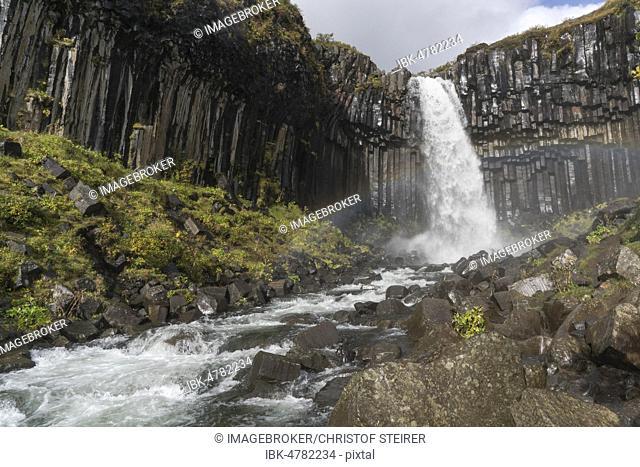 Svartifoss Waterfall, Skaftafell National Park, South Iceland, Iceland, Europe