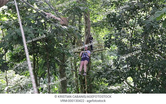 Young caucasin woman moving on a zip line through the jungle, St Lucia, Caribbean, Americas