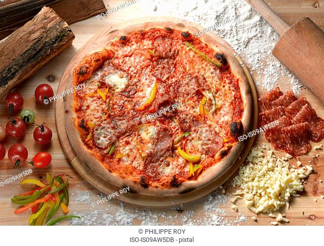 Overhead view of salami pizza